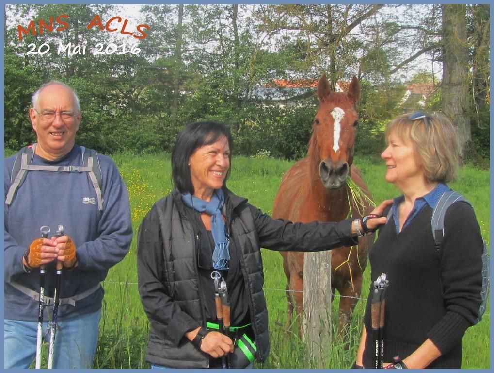 André,Yolande,Hortense (Copier).jpg