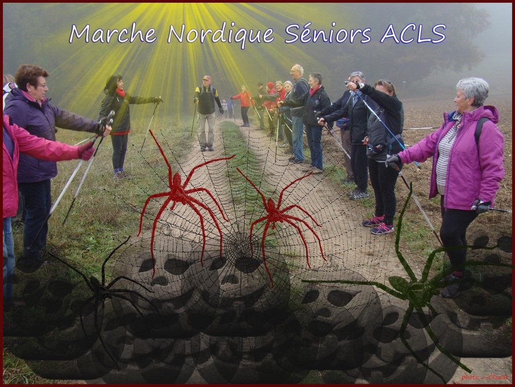MNS ACLS HALLOWEEN (Copier).jpg