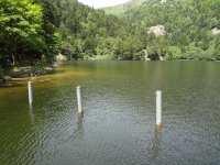Repas sur les rives du lac de Schiessrothried