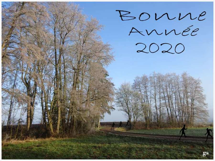 Bonne Année 2020 _Marcheurs Nordiques.jpg